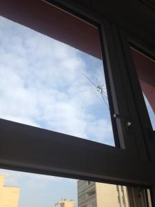 A Lauder belőtt ablaka